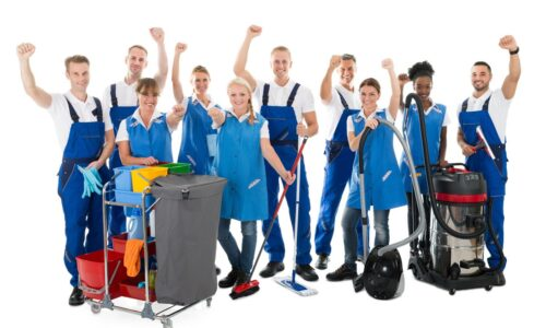 Cleaning Professionals Skills Suite CPSS